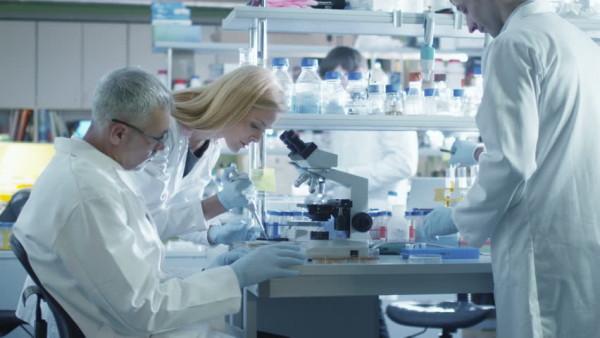 Recherches contre le cancer